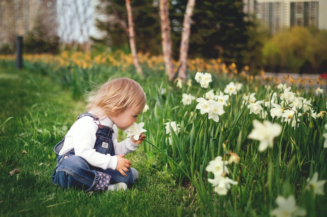 Cute little girl playing with flower image for girls whatsapp dp