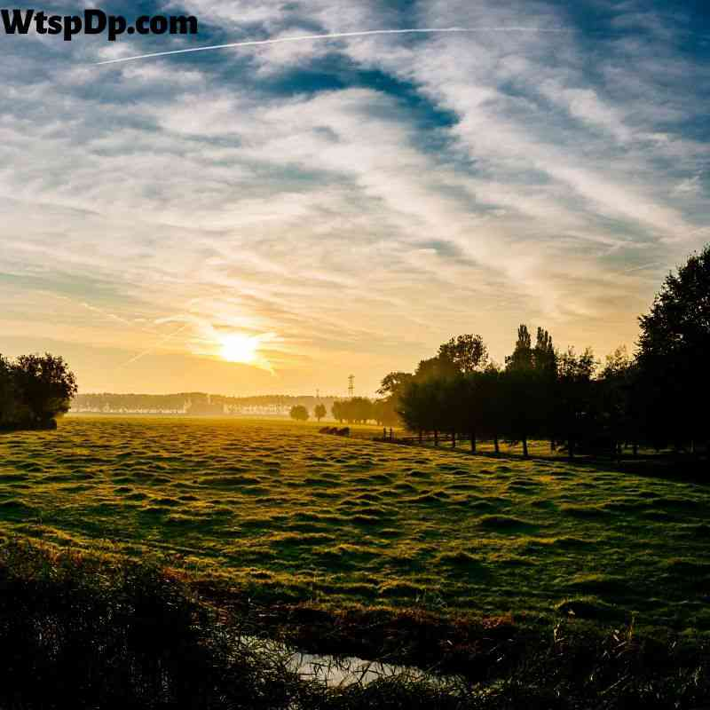 Beautiful nature landscape view image for dp
