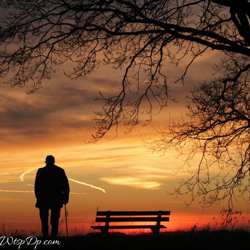 Alone man viewing the sunset image for sad whatsapp dp image